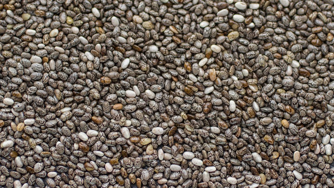 Vikima Seed Får 772.000 Kr. I Støtte Til Nyt Anlæg Til Procesenergi